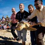 Alliberament de tortugues. (Premià de Mar, 2005)