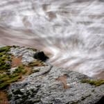 Roques de mar. (Arenys de Mar, 2012)